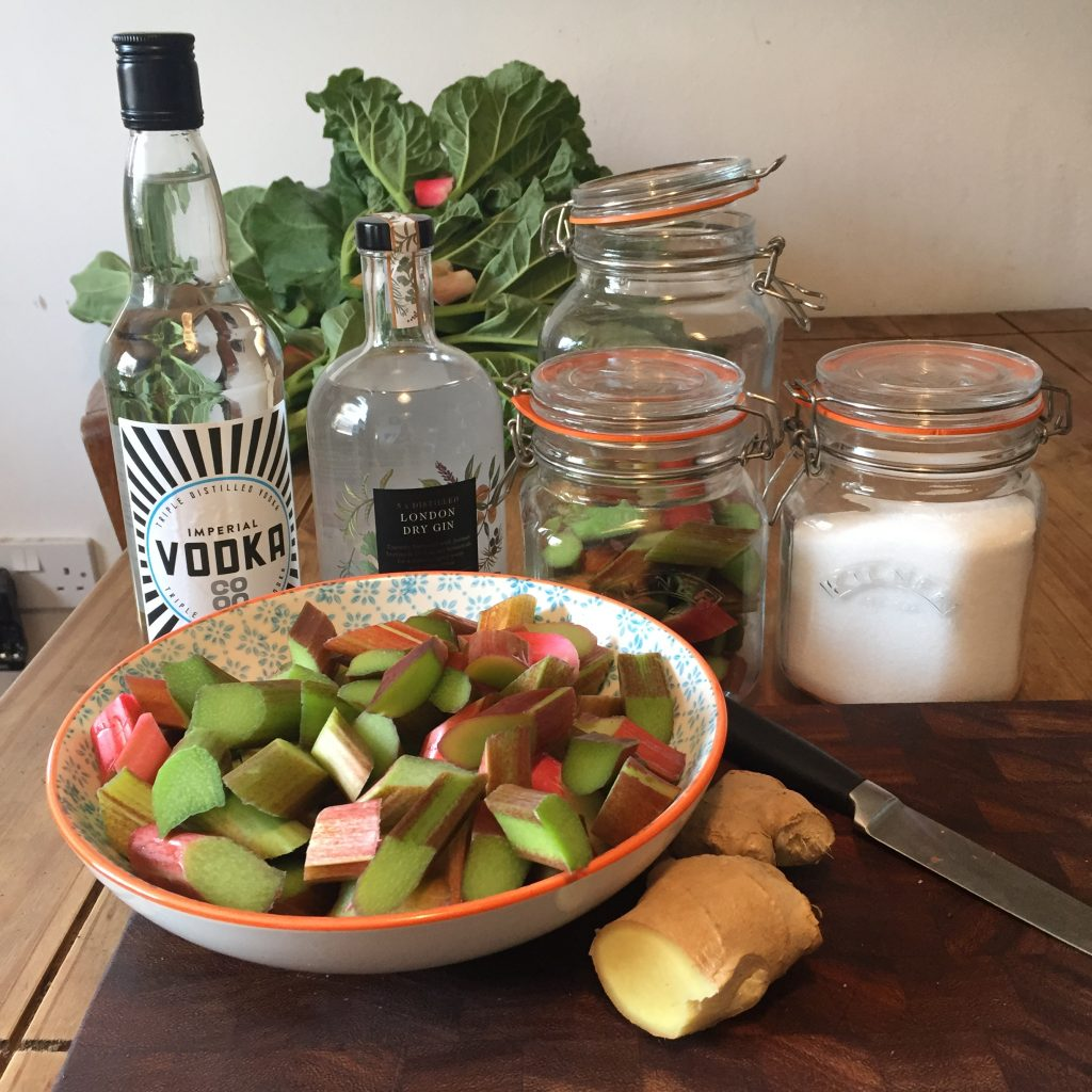 How to make Rhubarb Liqueurs